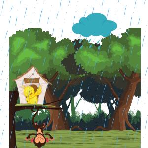 Bird with rain