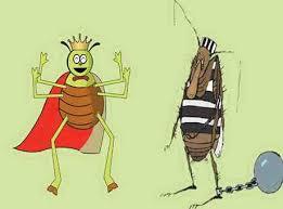 The Bug and Poor Flea