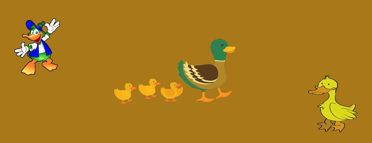 ducks thyme for kids