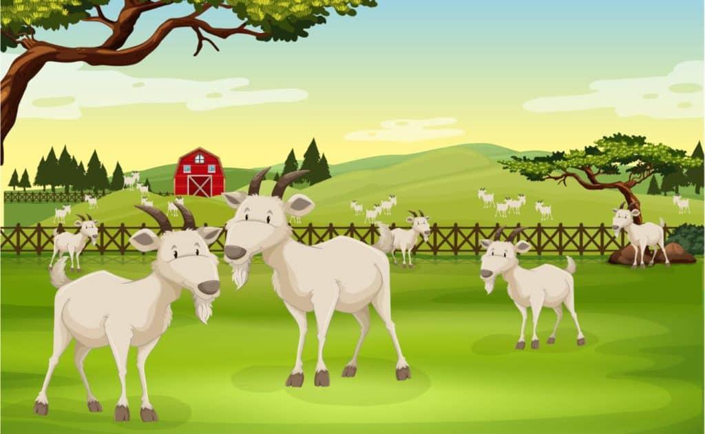 The Three Billy Goats Gruff Story