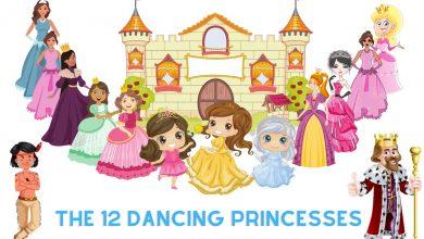 the 12 dancing pincesses