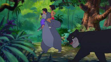 Mowgli Finds a Friend
