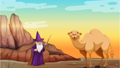 How to camel get its hump